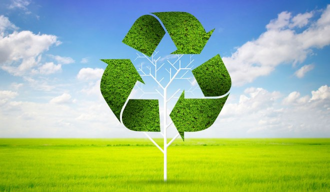 bigstock-Tree-As-A-Recycle-Symbol-43533886